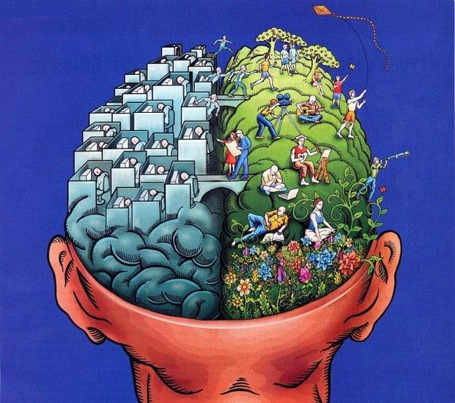 Chuyện hai bán cầu não bộ