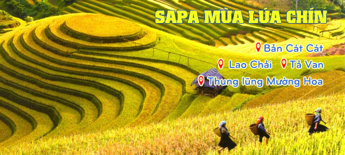 Địa điểm du lịch nổi tiếng ở Sapa
