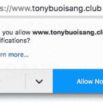 Đọc các bài viết tại  www.tonybuoisang.club